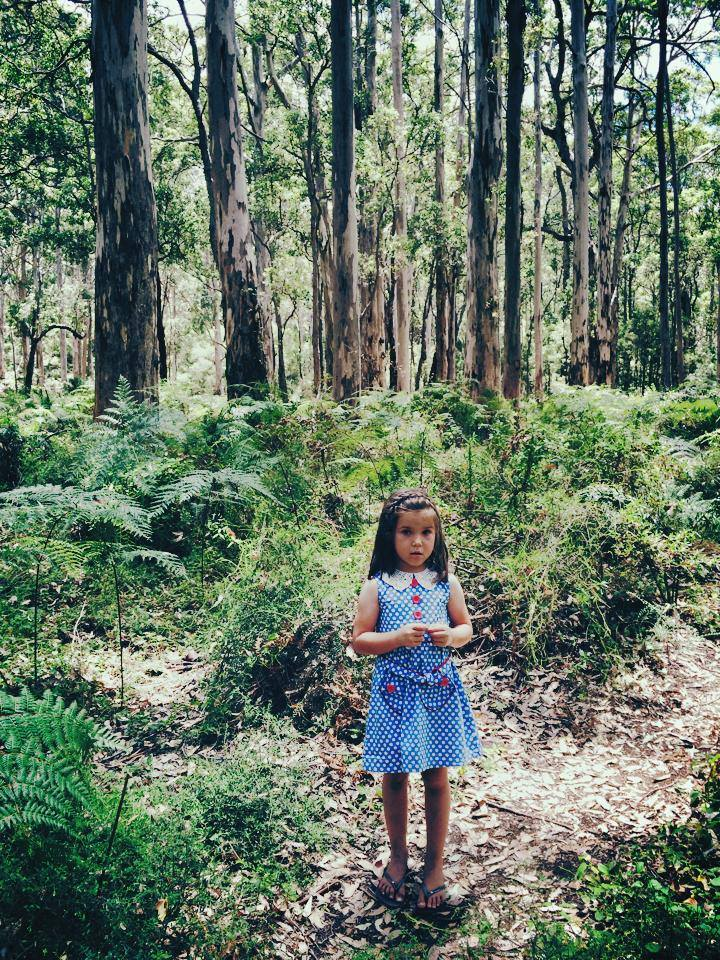 Boranup Forest - A Trip into the Woods of Margaret River