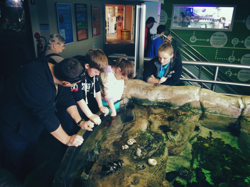 Close Encounters : A Trip to Manly SEA LIFE Sanctuary