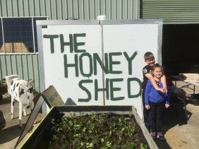 Blue Mountains Honey - A Visit to the Honey Shed