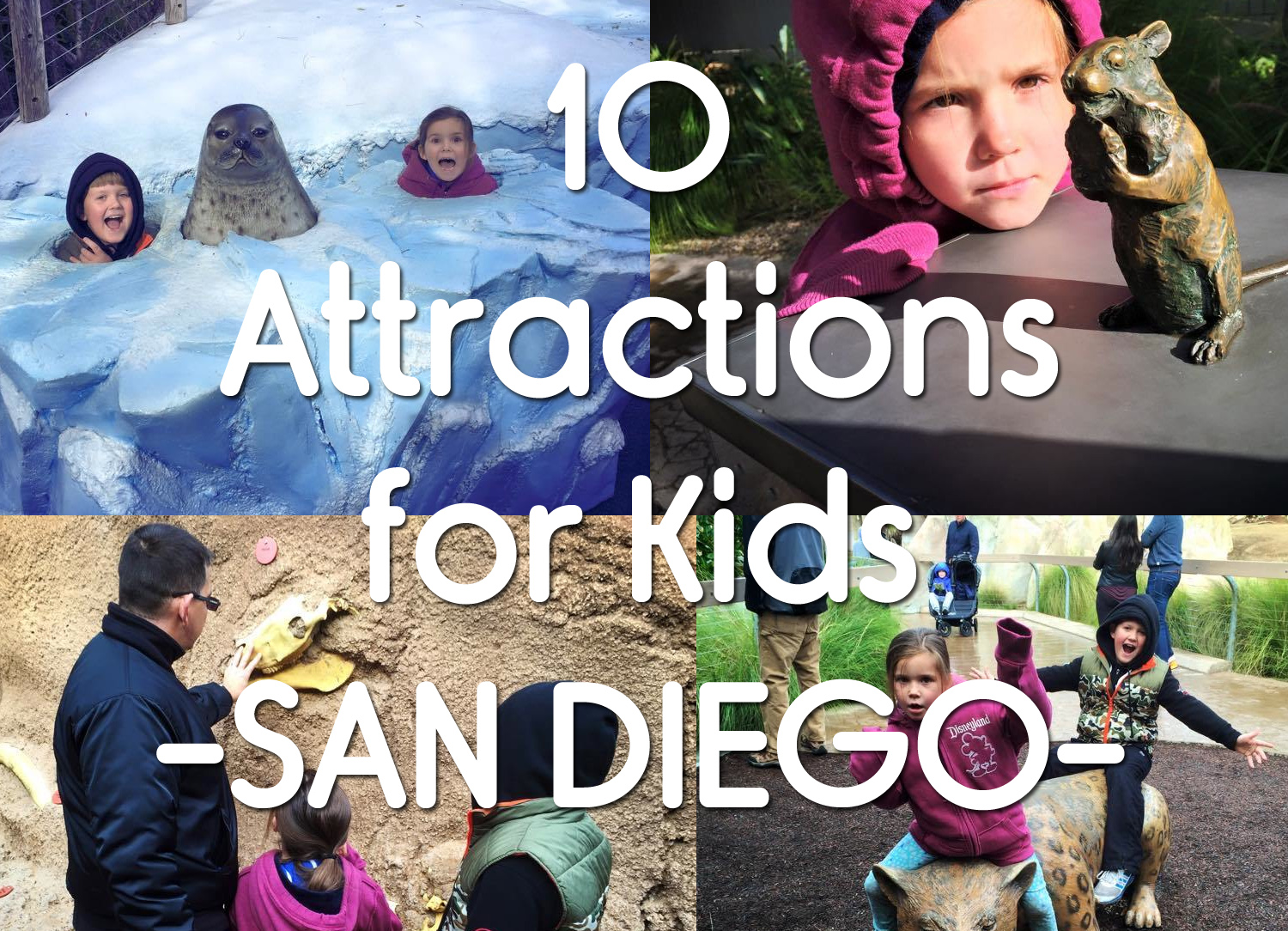 10 Things To See in San Diego with Kids : Adventures for the Whole Family
