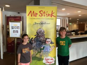 Mr Stink Children's Show - David Walliams' Book Live On Stage