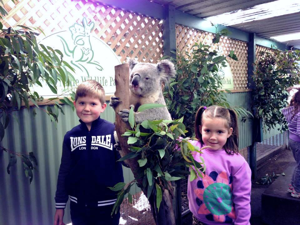 Featherdale Wildlife Park : Hands On Learning With Australian Wildlife