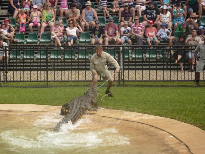 Australia Zoo : Queensland Adventures + A Chance Meeting With Bindi & Robert Irwin