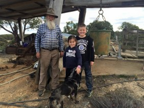 History Hill : The Gold Rush Brought To Life in Hill End