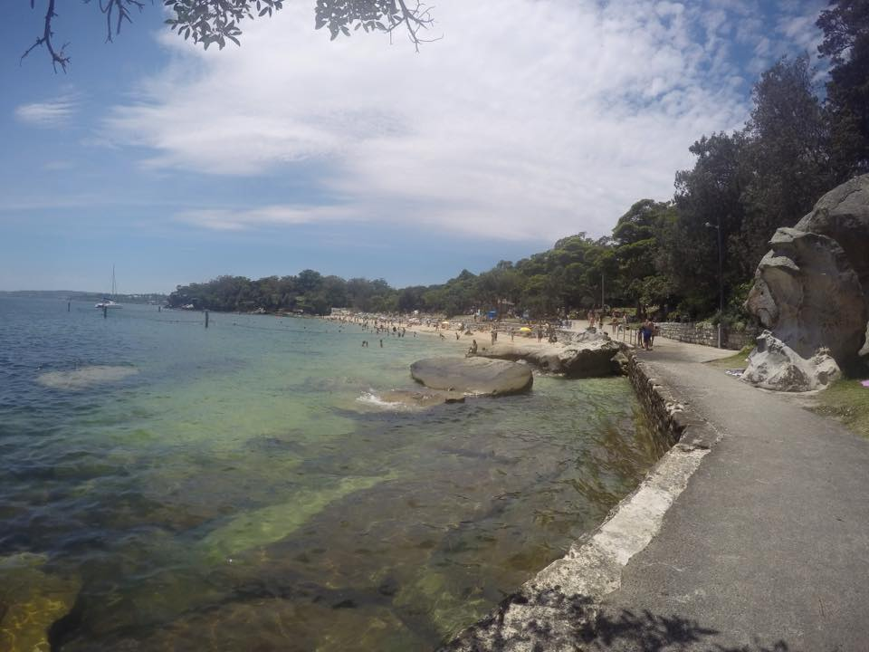 Shark Beach - Nielsen Park : A Family Friendly Sydney Beach