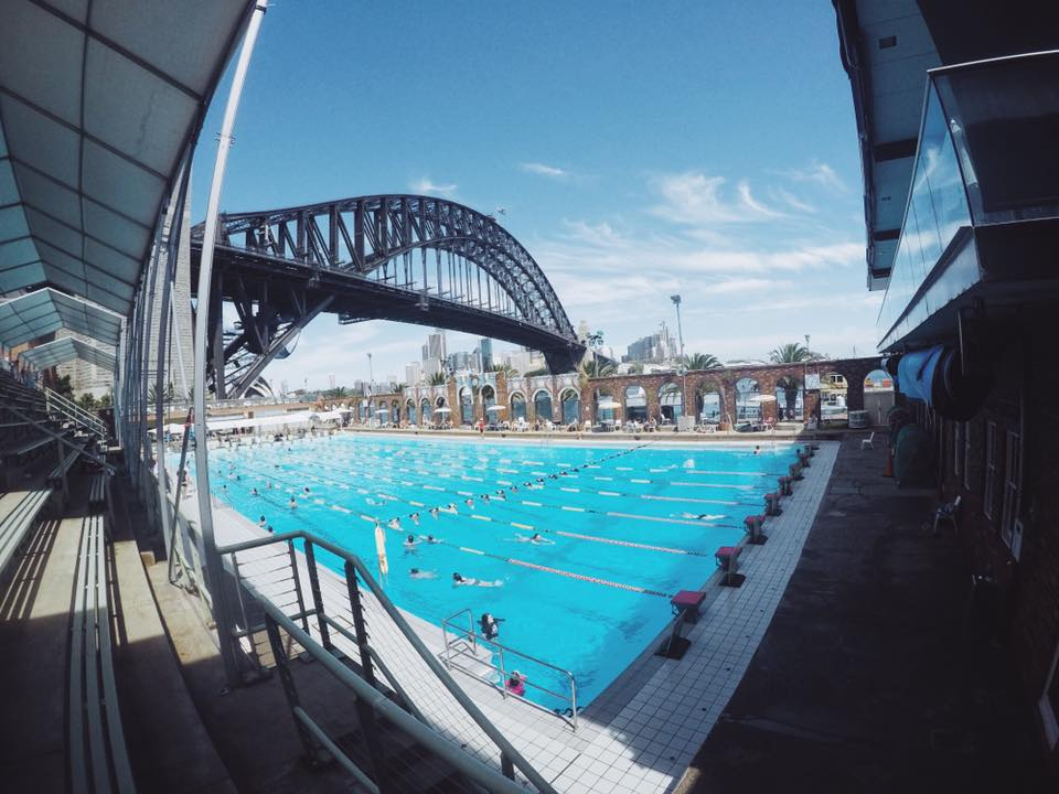 North sydney olympic pool swimming under the sydney harbour bridge the kid bucket list for North sydney pool swimming lessons