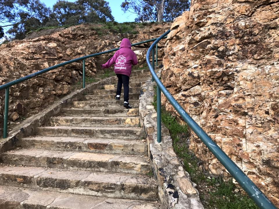 Mount Ainslie : The Best Free View Over Canberra