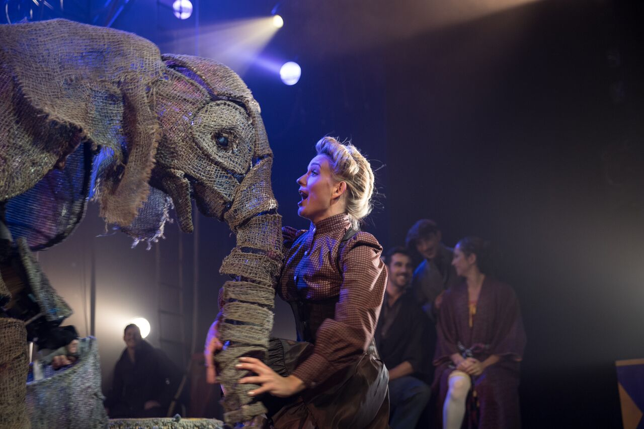 CIRCUS 1903 – The Golden Age of Circus : An Elephant Experience