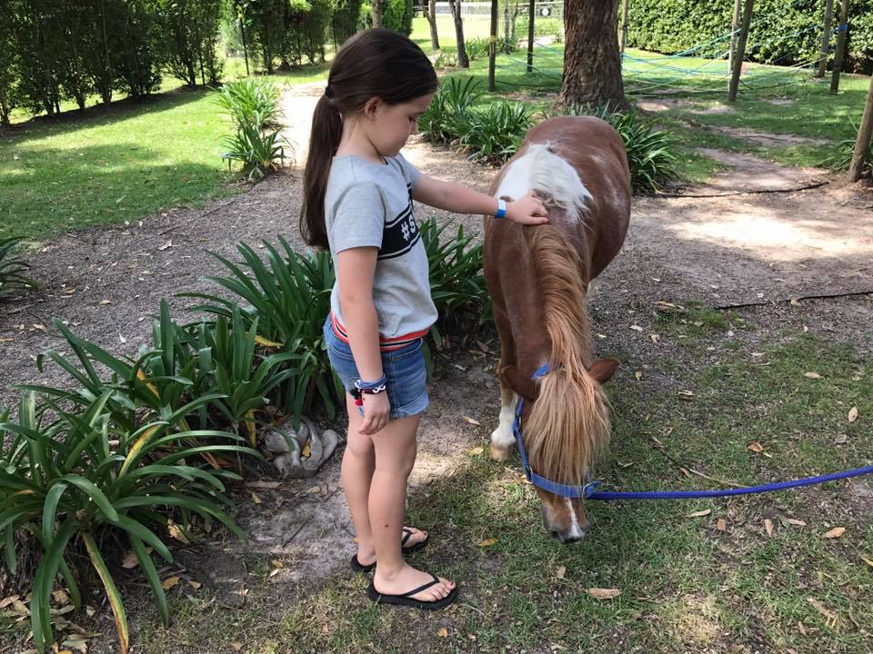 Amazement Farm and Fun Park : A Day Trip to Wyong