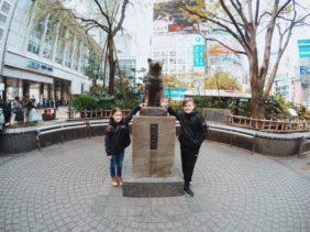 Hachiko : The Akita Who Waited Every Day