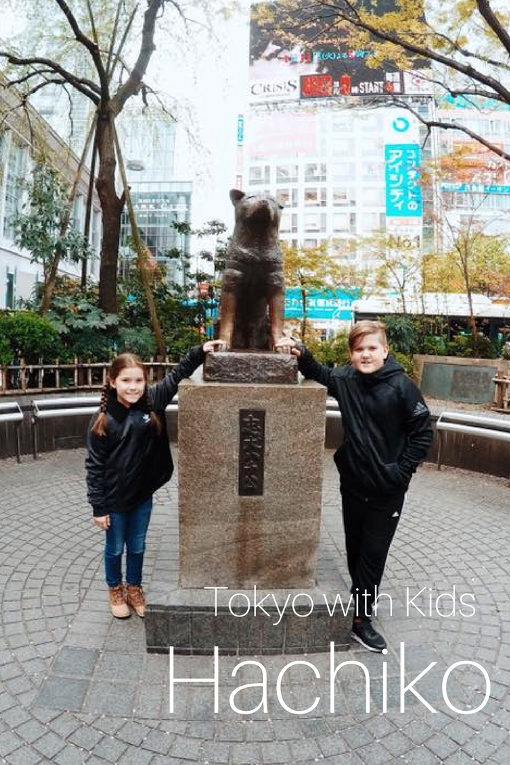 Hachiko : The Akita Who Waited Every Day
