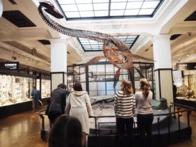 National Museum of Nature and Science Tokyo