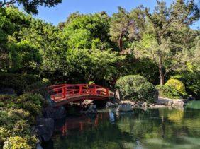 Auburn Botanic Gardens with Kids : Japanese Gardens in Sydney