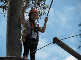 Wild Ropes at Taronga Zoo : High Ropes Course in Sydney