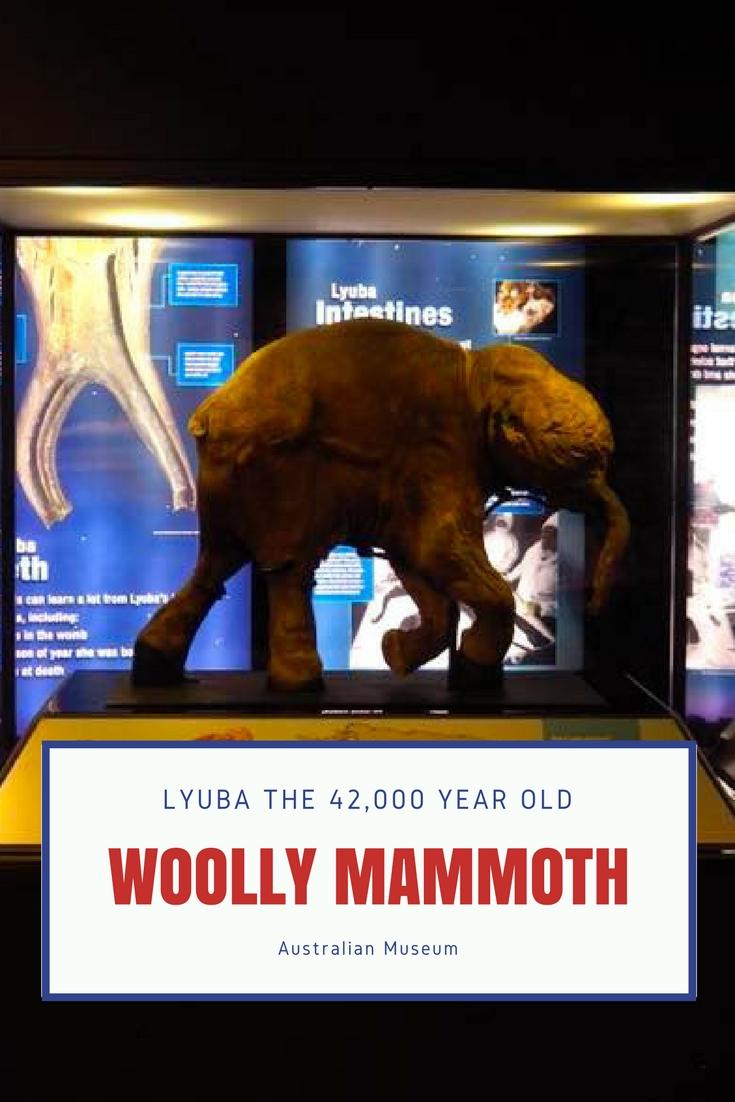 Woolly Mammoth to Sydney