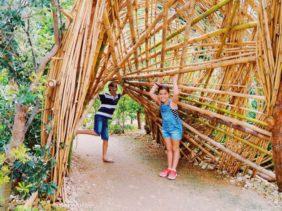 Ian Potter Children's Garden Centennial Park Sydney