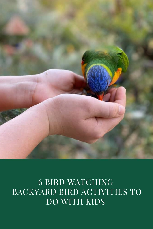 6 Bird watching backyard bird activities to do with children