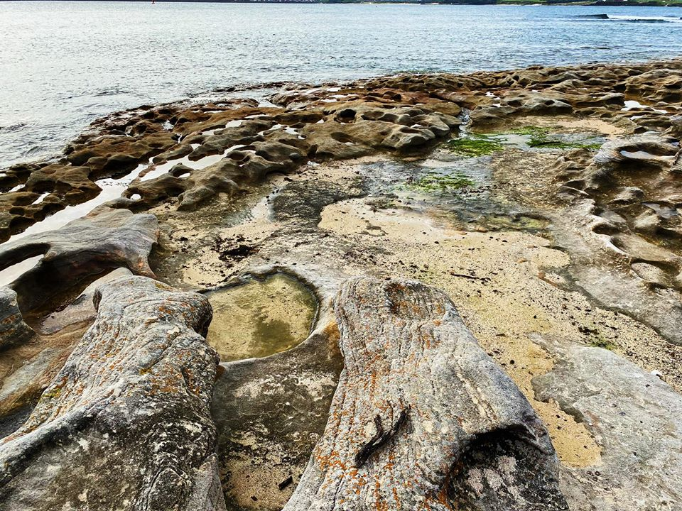 Kurnell Sydney |  Visit Kurnell |  Botany bay with children |  Kurnell with children